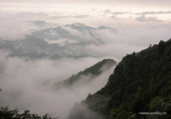 紫云洞山风景区位于永安市洪田镇上石村
